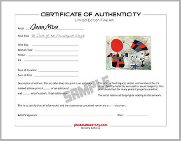 Certificate of Art Work Authenticity